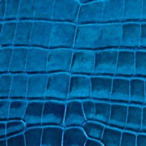 Alligator vernis bleu