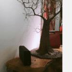 tree wallp